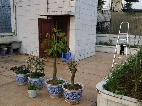 跃层稀缺资源,房子与同层住户无共墙,带独立楼顶私家花园